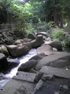 神田川のスタート地点